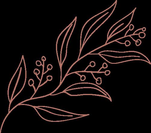 Illustration d'une fleur.